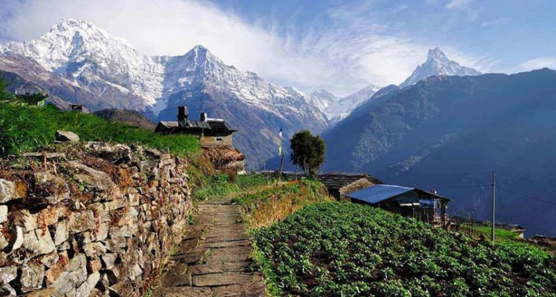 Enjoy a Lot by Choosing the Best Nepal Tour Package