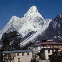Everest Comfort