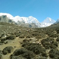 Nar Village better place for Trekking in Nepal